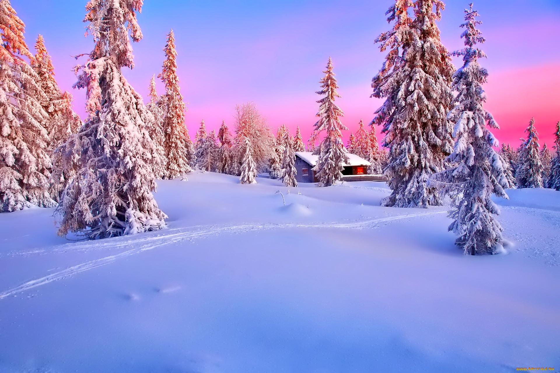 Природа зимой новый год картинки